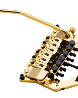 Floyd Rose Frx Gold (Set) K