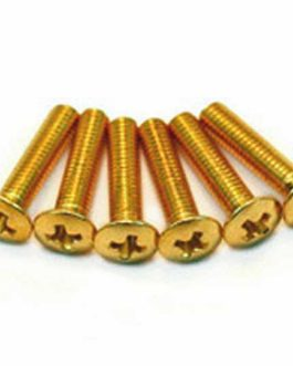 VIS BOUTON GOLD SMALL (6)